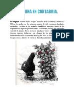 La Fauna en Cantabria