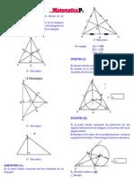 CAP 10_PUNTOS NOTABLES - RECTA DE EULER_TEORÍA