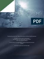 Skincare Premium Display Presentation, IV