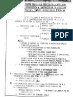Calcul_pereti_zidarie_PETROVICI.pdf