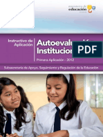 INSTRUCTIVO AUTOEVALUACION