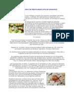 Curso Práctico de Helicicultura caracoles