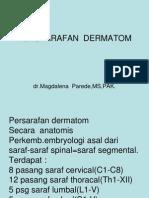 3. Anatomi Dr Della
