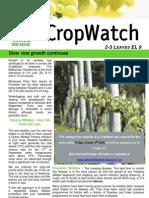 Adelaide Hills Crop Watch 021009