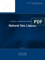 Natural Gas Briefing 1 PDF