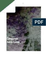 204382414 Campanas Por Andres Castane