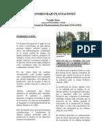 40-Pastoreo Bajo Plantaciones