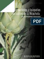 Alcachofa Ficha Tecnica