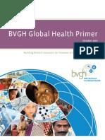 BVGH Global Health Primer 10Dec07