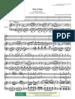 Donizzetti Trio Per Flauto Fagotto e Piano