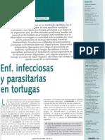 Enfermedades Infecciosas y Parasit Rias en Tortugas