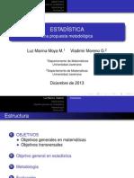 Estadistica_LMM_VMG.pdf