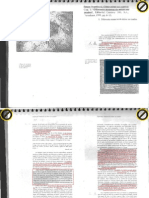 Lect.4-Woodford,Susan-ManerasMirarCuadro.pdf