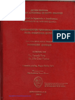 Portes Chemical Engineering Thesis.pdf