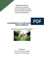 EMPRESA Y AMBIENTE trabajo.docx