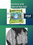 Cell Structure and Function 2012