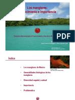 Manglares.pdf