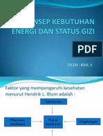 Konsep Kebutuhan Energi Dan Status Gizi