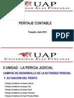 PERITAJE CONTABLE-2013-11.pptx
