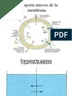 Transporte activo.pptx