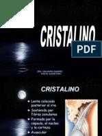 8 CRISTALINO.pdf