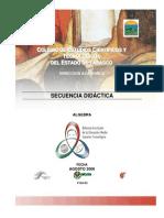 Algebra programa y secuencias.pdf