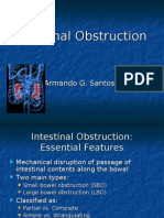 7342961 Intestinal Obstruction July 2008