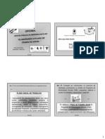 roteiro plano de trabalho.pdf