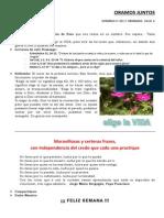 16 febrero 14.pdf