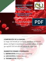 SANGRE Y PROCESO INFLAMATORIO.pptx
