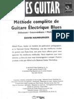 NGW - David Hamburger - Guitare Blues Débutant.pdf