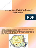 Vine and Wine in Romania