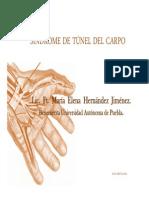 TUNEL-DEL-CARPO-BUAP.pdf