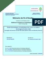 memoire fin etude hydraulogie.pdf