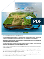 Agricultura irrigada sustentável e o ciclo hidrológico.pdf