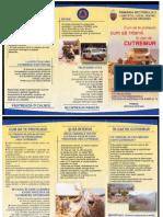 Brosura Informativa Cutremur