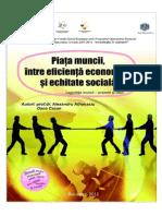 Piata muncii,intre eficienta economica si echitate sociala