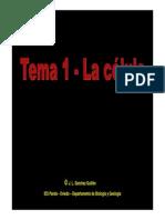 C1_teoria_celular.pdf