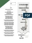 LIVRETO - culto de ação de graças.pdf