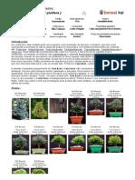 bonsai tuia.pdf