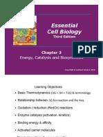 Rea Lec 4 Energy