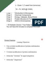 Rea Lec 6 Proteins II FP