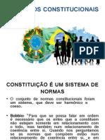 PRINCÍPIOS CONSTITUCIONAIS.ppt