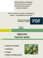ABACAXI.pdf