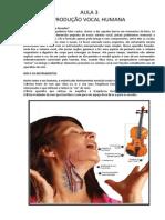 PRODUÇÃO VOCAL.pdf