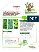 Herb Pots - Organic Growing Guides for Teachers + Students + Schools
