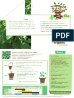 Basil - Organic Growing Guides for Teachers + Students + Schools