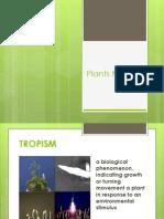plant tropisms 2011
