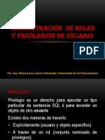 ROLES Y PRIVILEGIOS DE USUARIO.pptx