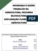 NR 31 - SEGURANÇA E SAÚDE NO TRABALHO - L I N O